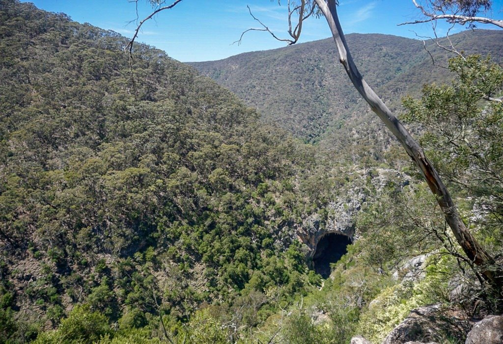 Nettle Cave Blue Mountains